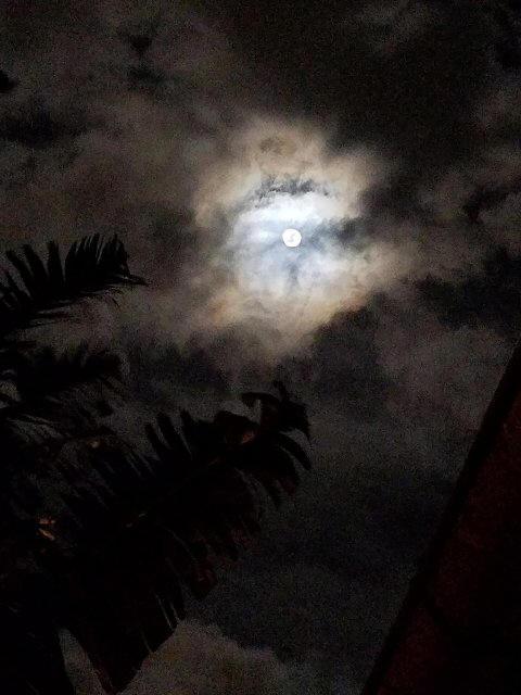 moonsuper